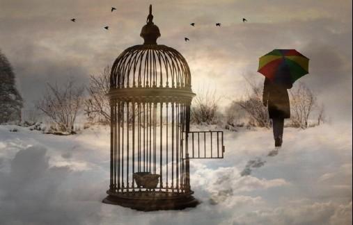 empty_cage-e1350570354430